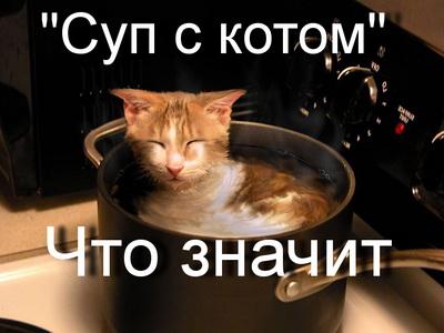 что значит выражение суп с котом