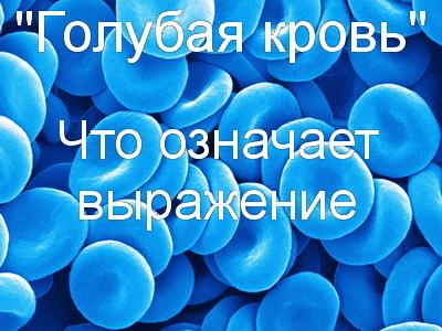 что значит голубая кровь