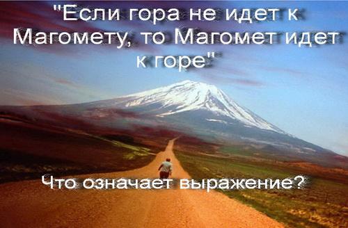 Если гора не идет к Магомету, то Магомет идет к горе что означает фраза