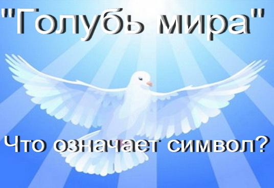 голубь мира что значит символ
