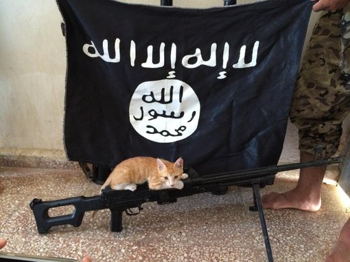 что означает флаг ИГИЛ