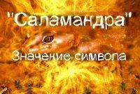 Что означает символ — саламандра