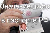 Что означают цифры в паспорте гражданина РФ?